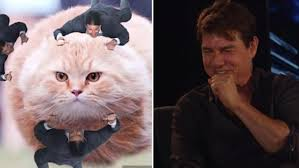 Tom Cruise Meme - tom cruise reacts to his tom cruise clinging meme for the first time