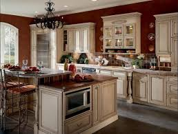 Kitchen Cabinets Nashville Tn Satisfying Images Yoben Magnificent Gripping Mabur Captivating