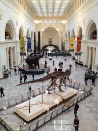 best 25 chicago museums ideas on chicago things to do