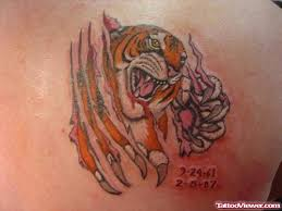ripped skin tiger on right back shoulder viewer com