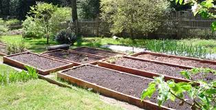 Best Type Of Mulch For Vegetable Garden - eartheasy blograised beds preparing your garden beds for spring