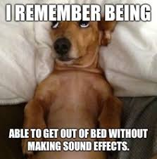 Dog In Bed Meme - dog in bed memes imgflip