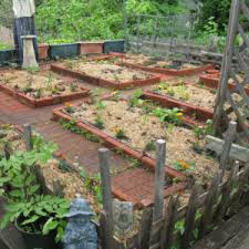 inspiring home garden dos and donts vegetable garden design plans