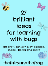 the fairy and the frog 27 ideas for kids mini beast and bug
