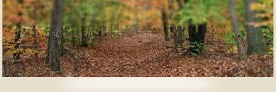 burlington county nj official website official website
