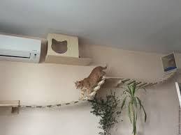 Shelves For Cats by Buy Wall Complex For Cats Simple Cat Cat House Complex For Cats