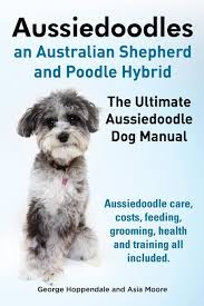 cost of australian shepherd aussiedoodles the ultimate aussiedoodle dog manual aussiedoodle
