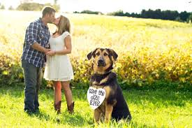 save the date signs awesome save the date photo ideas with dogs selection photo and