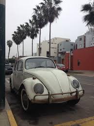 original volkswagen beetle volkswagen beetle young pat perú