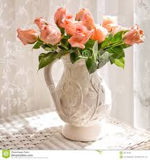 pitcher of roses white pitcher with roses stock photo image of floral bright