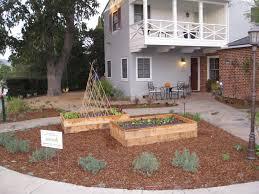 drought tolerant native plants big changes for a big front yard gardenerd