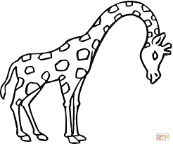 giraffe coloring pages printable gianfredanet 13966 simple