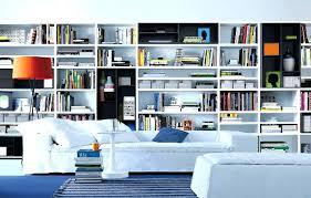Ikea Wall Bookshelf Bookcase Wall To Wall Bookshelf Designs Wall To Wall Shelf Plans