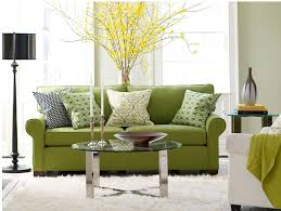 living room design ideas with green sofa and amazing transitional