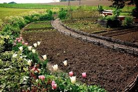 Backyard Kitchen Garden Oklahoma Kitchen Garden Best Gardens Images On Pinterest Backyard