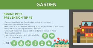 10 spring and summer pest prevention tips dynasty pest control