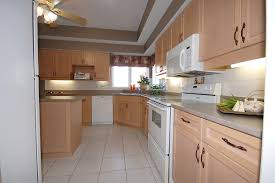 kitchen cabinet transformations kitchen furniture kitchen cabinet paint kit reviews kits to yeo lab