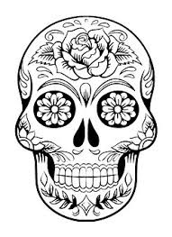 skull free pictures on pixabay
