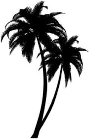 black palm tree tattoos designs