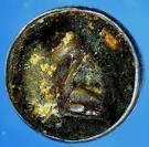 ruampra.com :: กรณ์ พระนครใต้:เสือหลวงพ่อปาน บรรจุในตลับสีผึ้ง ...