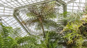 list of native australian plants plant collections phipps conservatory and botanical gardens
