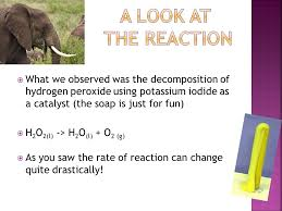 3 what we observed was the decomposition of hydrogen peroxide using potassium iodide