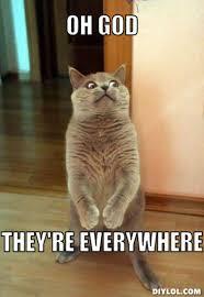 Everywhere Toy Story Everywhere Meme Generator - everywhere meme maker story meme generator memes crackpots