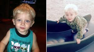 child in french dog captured in mauling of 1 year old boy in french valley child