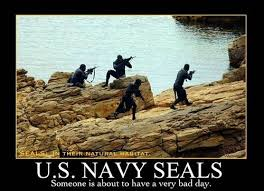 Navy Seal Meme - 80 best navy seals images on pinterest special forces military