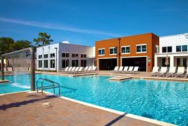1 Bedroom Apartments Near Usf by Venue At North Campus Apartments Near Usf Renttampabay