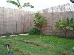backyard aquaponics u2022 view topic ash and 1 first system