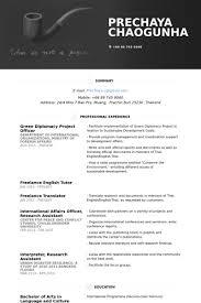 Sample Resume For English Tutor by Project Officer Resume Samples Visualcv Resume Samples Database