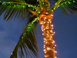 Lighted Tree Home Decor Decorated Palm Trees For Christmas Home Decorating Ideas