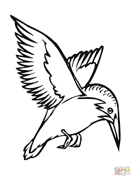 flying kingfisher coloring page free printable coloring pages