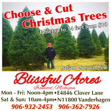 blissful acres tree farm tree services clover ln ironwood mi