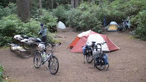 Honeyman State Park Map by Pictures Of Oregon 2 Pacific Coast Bicycle Touring Photo Pictures