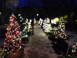 walkway christmas trees rainforest islands ferry