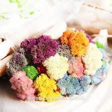 flowers wholesale flowers wholesale flowers wholesale suppliers and