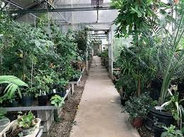 Ucr Botanical Gardens Ucr Botanic Gardens Picture Of Of California