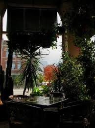 plants that grow in dark rooms the dining room with the windows and plants facing university