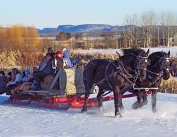 take a sleigh ride at gammondale farm lake superior magazine