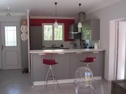 cuisine couleur gris cuisine grise profitez espace moderne 23 idées sympas accents