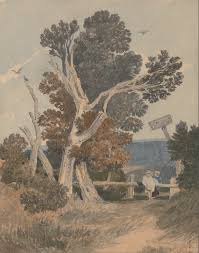 file sell cotman a of trees by a fence