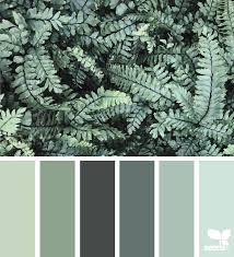 color nature seeds design seeds and color pallets