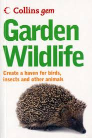 collins gem guide garden wildlife how to encourage and attract