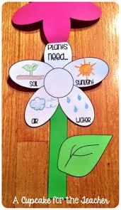 276 best plant unit images on pinterest plants kindergarten