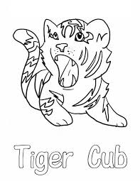 snow tiger coloring page cub drawing at getdrawings com free for personal use cub drawing