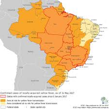 city map of brazil yellow fever in brazil confirmed cases in areas in são