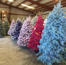 Christmas Tree Stores In Nj Colorful Christmas Trees Are The New Divisive Trend To Try