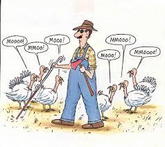 redneck thanksgiving pictures daniel rinehart u0027s fun corner